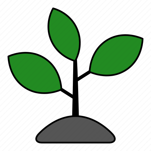 agriculture, garden, leaves, nature, plant, seeds, tree icon