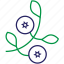 blueberries, food, fruit, outline icon