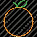 food, fruit, orange, outline icon