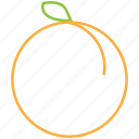 food, fruit, outline, peach icon