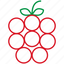 food, fruit, outline, raspberry icon