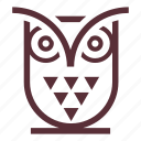 bird, owl, owl bird, wise icon
