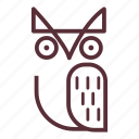 bird, education, night bird, owl, owl bird, owl face, wise icon