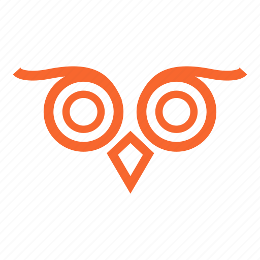 bird, education, eyes, night bird, owl, owl bird, owl eyes, wise icon