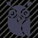 bird, education, night bird, owl, owl bird, owl face, wise icon