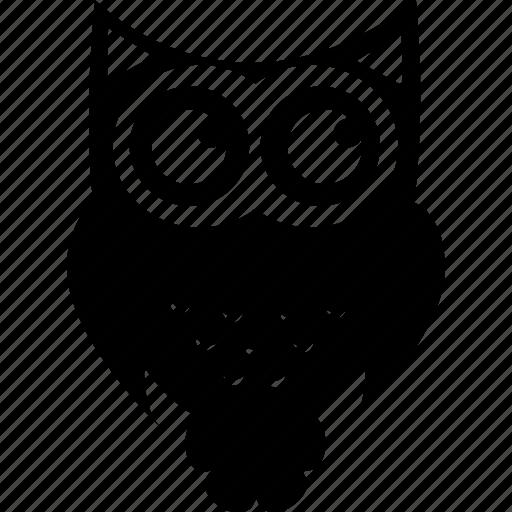 animal, animals, bird, nature, owl, owl bird, owls icon