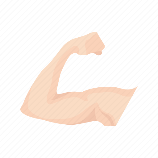 arm, bicep, flexing, human arm, human body, muscle, strong icon
