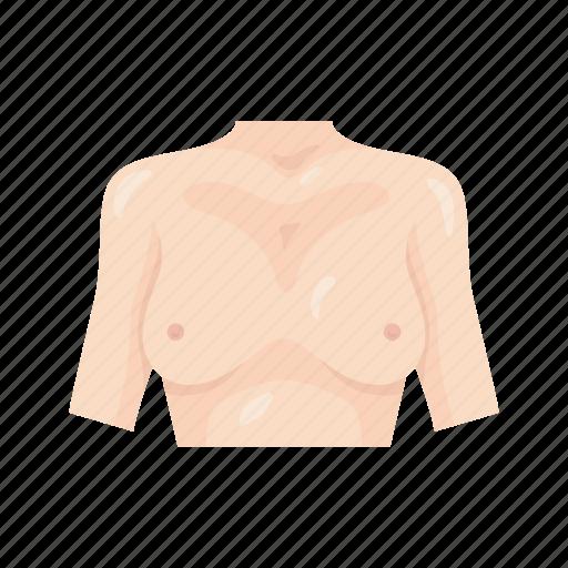 anatomy, body, breast, chest, female chest, human anatomy, human body icon