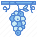 berry, food, fruit, grape icon