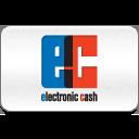 cash, electronic icon