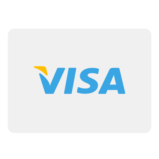 pay, payment, visa icon