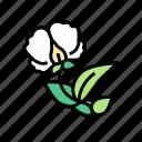 flowering, plant, peas, vegetable, flower, preserve icon