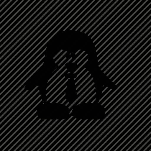 animal, bird, penguin, tie icon