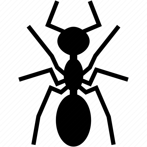 ant, insect, pest icon