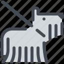 dog, leash, pet, purebred, show icon