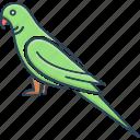 bird, friendly, green, lovebird, macaw, parrot, pet