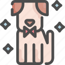 animal, clean, dog, grooming, pet, salon, shop icon