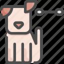 animal, clean, ears, grooming, hygiene, pet, shop icon