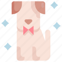 animal, dog, grooming, hygiene, pet, salon, shop icon
