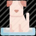 animal, bed, dog, pet, shop icon