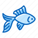 fish, gold, pet, shop icon