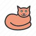 animal, beautiful, cat, cute, domestic, pet icon