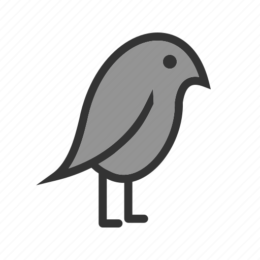 bird, cute, flying, green, home, parrot, pet icon