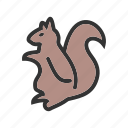 animal, brown, cute, mammal, red, rodent, squirrel