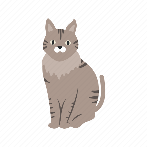 Animal, beautiful, cat, cute, domestic, pet icon - Download on Iconfinder