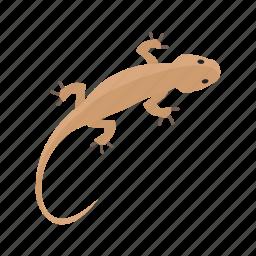 animal, color, lizard, orange, pet, reptile, tail icon