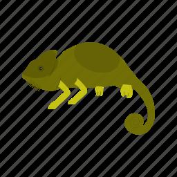 animal, chameleon, green, lizard, pet, reptile, tail icon