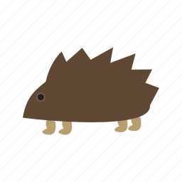 african, brown, cute, hedgehog, hedgehogs, pet icon