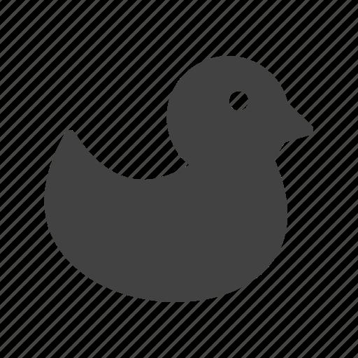 animal, beautiful, bird, duck, ducks, waterfowl, wild icon