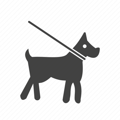 bulldog, collar, dog, lead, leash, puppy, training icon