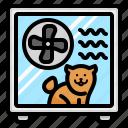 dog, dryer, drying, box, machine, hair