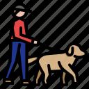 dog, walking, walk, services, man, training, pet