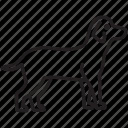 animal, canine, dog, pet, vet, walk, wolf icon