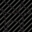 dog, leash, park, sign, vet, walk