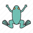 amphibian, animal, frog, froggie, terrarium, wildlife, zoology icon