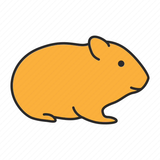 Animal, cricetidae, domestic, hamster, pet, rat, rodent icon - Download on Iconfinder