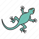 animal, gecko, lizard, pet, reptile, salamander, zoology icon