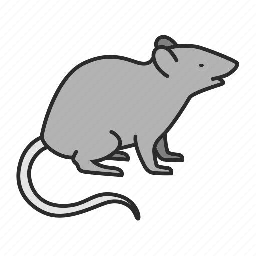 Animal, mice, mouse, pest, pet, rat, rodent icon - Download on Iconfinder