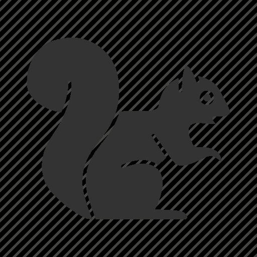 animal, chipmunk, nature, pet, rodent, squirrel, wildlife icon