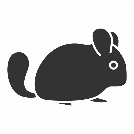 Animal, chinchilla, chinchillidae, fur, pet, rodent, zoology icon - Download on Iconfinder