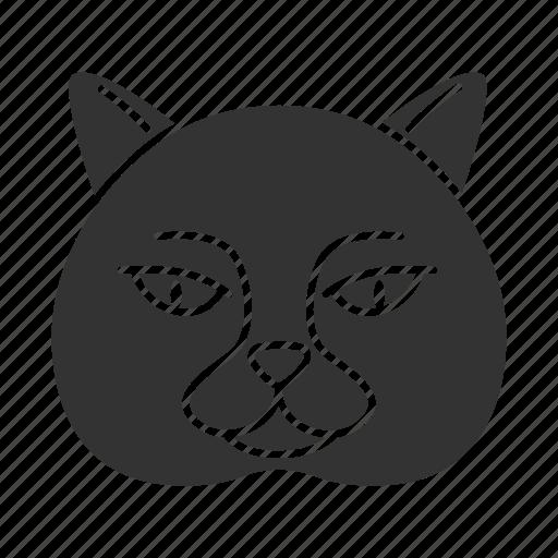 Animal, british, cat, domestic, kitten, pet, shorthair icon - Download on Iconfinder
