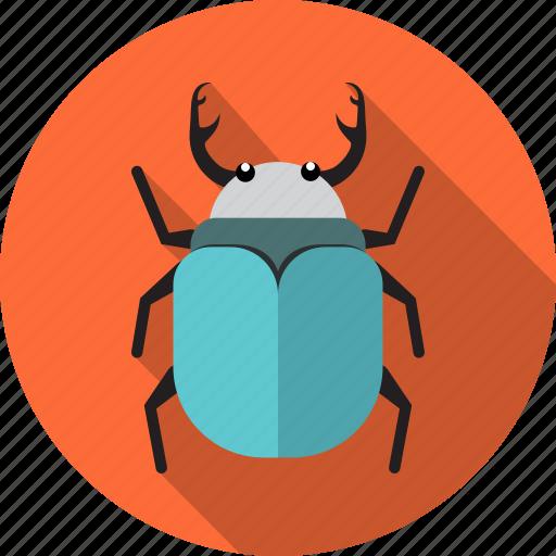animal, beetle, bug, insect, virus icon