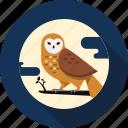 animal, bird, feather, night, owl, wildlife icon