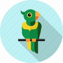 animal, bird, feathers, parrot, wings, zoo icon