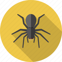 antivirus, bug, insect, security, spider, virus icon