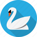 animal, bird, calm, fairy, swan, zoo icon